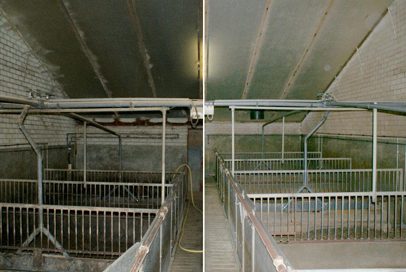 Reiniging afdeling varkensstal
